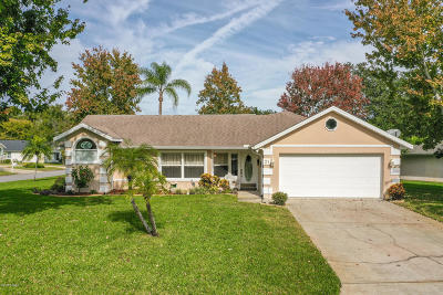 Ormond Beach Single Family Home For Sale: 21 Parkview Lane