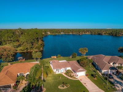 Palm Coast Single Family Home For Sale: 62 Burbank Drive