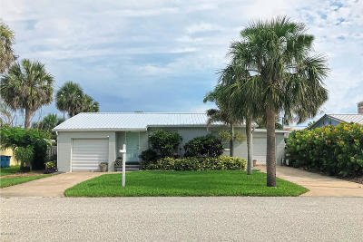 Daytona Beach Single Family Home For Sale: 117 Dottie Avenue