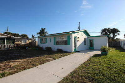 Ormond Beach Single Family Home For Sale: 24 Seaview Drive