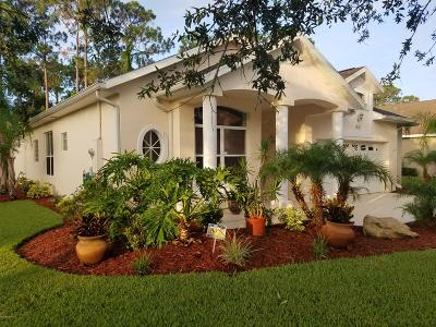 Ormond Beach Single Family Home For Sale: 46 Canterbury Woods