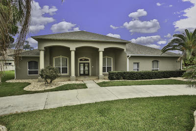 Port Orange Single Family Home For Sale: 6065 Sabal Crossing Court