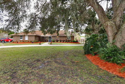 Port Orange Single Family Home For Sale: 340 Quiet Trail Drive