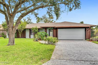 Palm Coast Single Family Home For Sale: 34 N Clinton Court