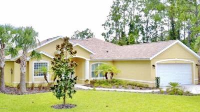 Palm Coast Single Family Home For Sale: 21 Pheasant Drive