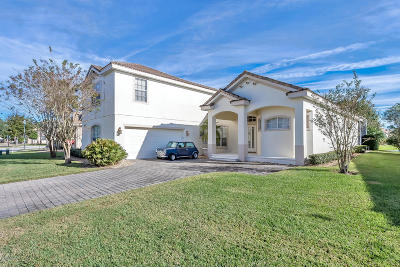 New Smyrna Beach Single Family Home For Sale: 493 Venetian Villa Drive