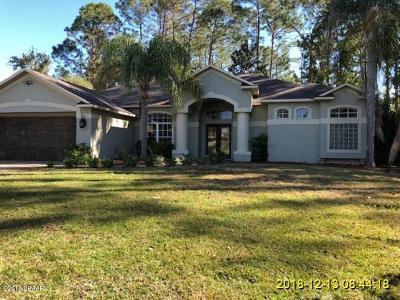 Palm Coast Single Family Home For Sale: 17 Edison Lane