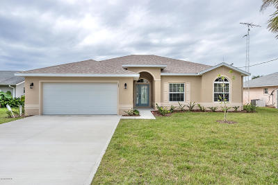 Palm Coast Single Family Home For Sale: 28 Cool Water Court