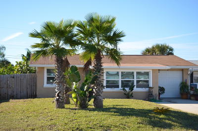 Ormond Beach Single Family Home For Sale: 34 Poinsettia Drive