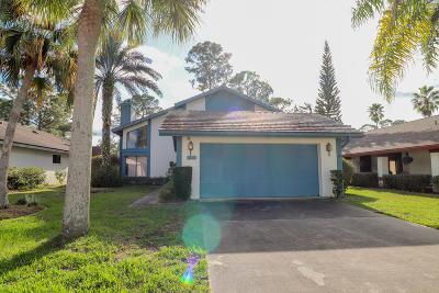 Daytona Beach Single Family Home For Sale: 101 Meadowbrook Circle