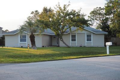 Palm Coast Single Family Home For Sale: 24 Prestwick Lane