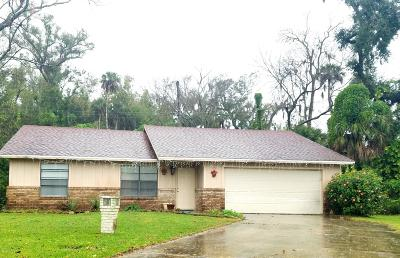 Volusia County Single Family Home For Sale: 96 Pine Trail