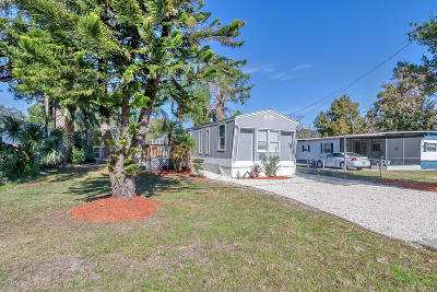 Port Orange Single Family Home For Sale: 1161 Bayview Lane