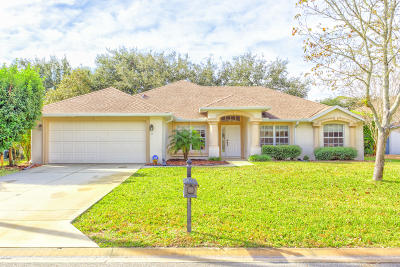 Ormond Beach FL Single Family Home For Sale: $276,000