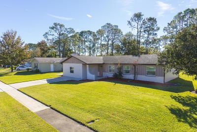 Port Orange Single Family Home For Sale: 1240 Eddie Drive