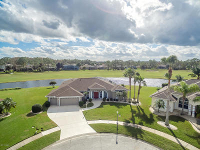 Port Orange Single Family Home For Sale: 6472 Renaissance Drive