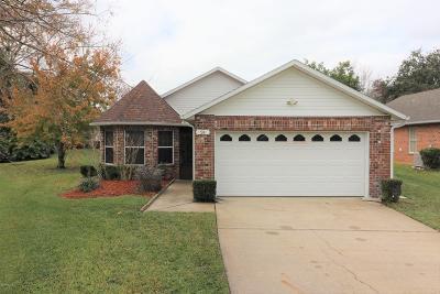 Ormond Beach Single Family Home For Sale: 24 Oak Village Drive