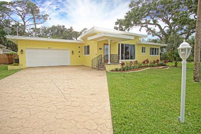 Port Orange Single Family Home For Sale: 4564 Halifax Drive