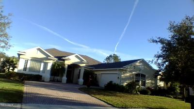 Daytona Beach Single Family Home For Sale: 101 Berg Court