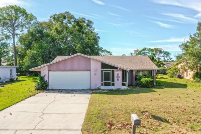 Palm Coast Single Family Home For Sale: 12 Carr Lane