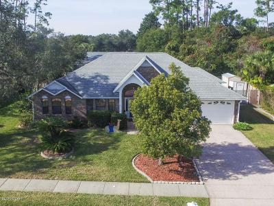 Port Orange Single Family Home For Sale: 5948 Park Ridge Drive