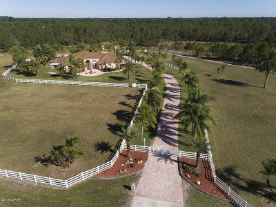 New Smyrna Beach Single Family Home For Sale: 3085 Pioneer Trail