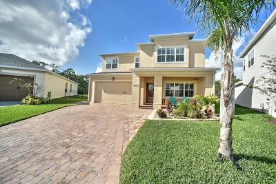 Port Orange Single Family Home For Sale: 5432 Hutchinson Street