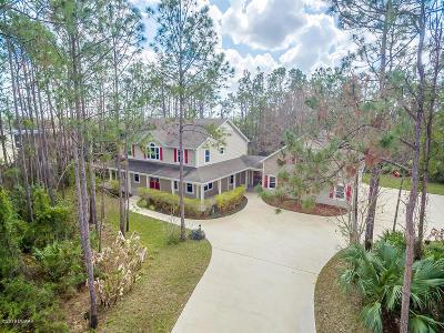 Ormond Beach Single Family Home For Sale: 238 Treeline Lane