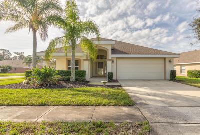 Port Orange Single Family Home For Sale: 1442 Areca Palm Drive