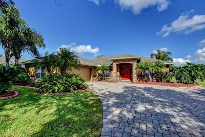 Port Orange Single Family Home For Sale: 1701 Promenade Circle