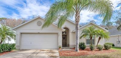 Port Orange Single Family Home For Sale: 6815 Vintage Lane
