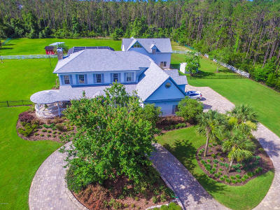 Ormond Beach Single Family Home For Sale: 2381 Lipizzan Trail