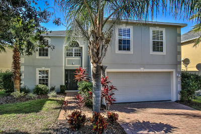 Port Orange Single Family Home For Sale: 3832 Sunset Cove Drive
