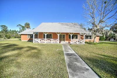Ormond Beach Single Family Home For Sale: 175 Buckskin Lane