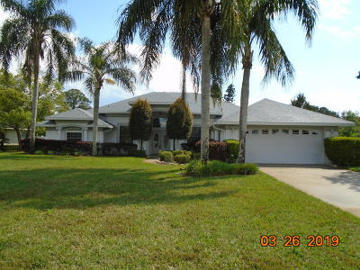 Debary Single Family Home For Sale: 253 Adelaide Street