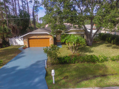 Palm Coast Single Family Home For Sale: 53 Briarvue Lane