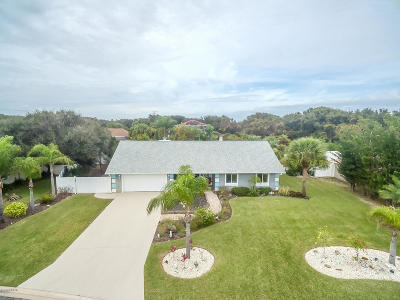 Ponce Inlet Single Family Home For Sale: 86 Rains Court