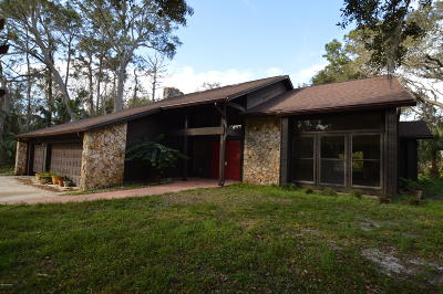 Ormond Beach Single Family Home For Sale: 136 Heritage Circle
