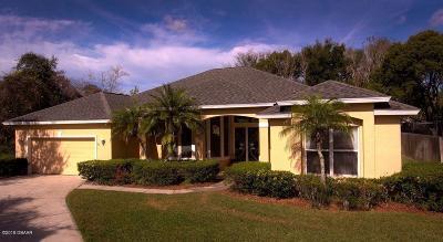 Port Orange Single Family Home For Sale: 5747 White Acres Lane