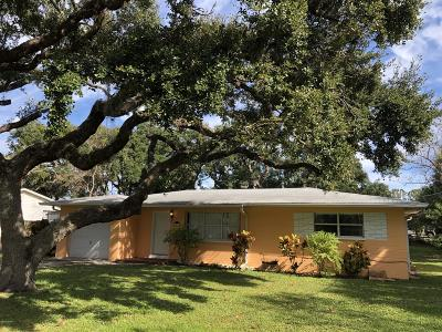 Ormond Beach Single Family Home For Sale: 1519 John Anderson Drive