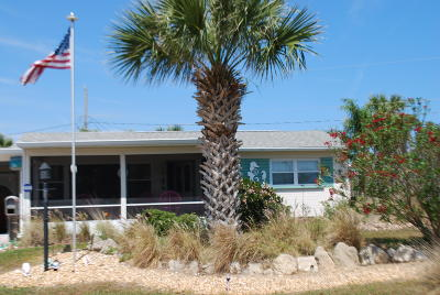 Ormond Beach Single Family Home For Sale: 41 Seabreeze Drive