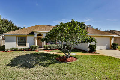 Ormond Beach Single Family Home For Sale: 80 Sounders Trail Circle