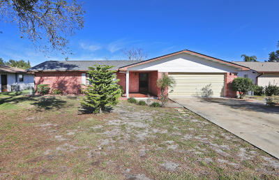 Port Orange Single Family Home For Sale: 677 Tumblebrook Drive