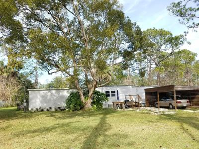Ormond Beach Single Family Home For Sale: 2028 Toni Street