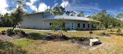 New Smyrna Beach Single Family Home For Sale: 690 Napoli Lane