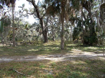 Volusia County Residential Lots & Land For Sale: 6015 Spruce Creek Road