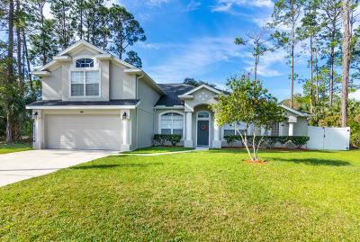 Palm Coast FL Single Family Home For Sale: $329,900