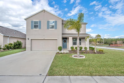 Port Orange Single Family Home For Sale: 1727 Savannah Lane