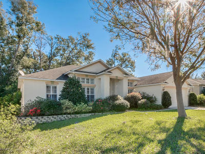 Deland  Single Family Home For Sale: 1305 Island Cove Drive