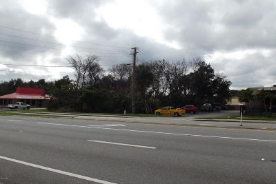 Volusia County Residential Lots & Land For Sale: S Us Hwy 1